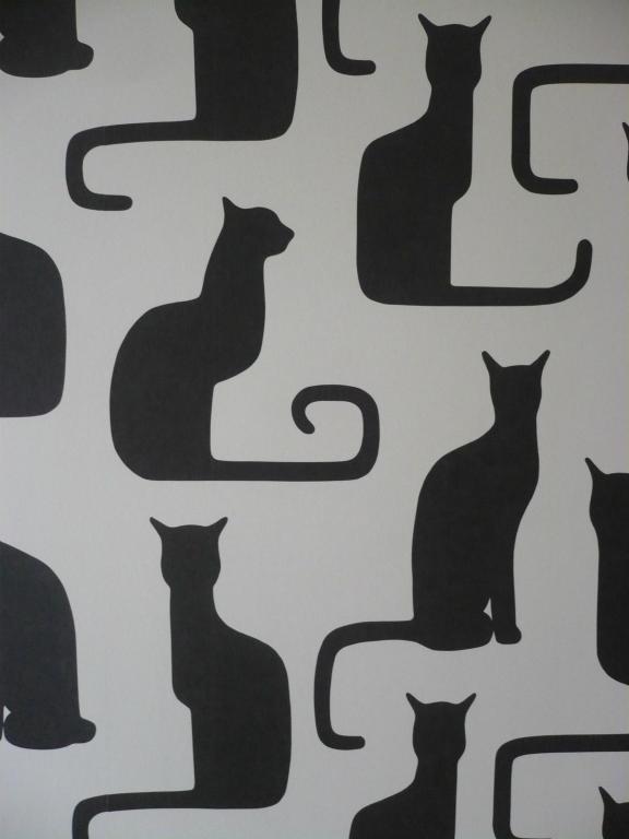 chambre chat 3