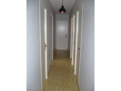 Rénovation d'une entrée et d'un couloir